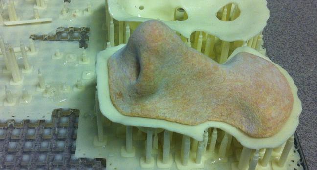 3D Printed Nose